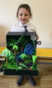 Rainforests Year 2 Assembly (9)