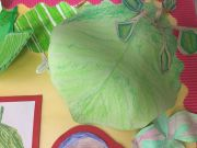 Rainforests Year 2 Assembly (3)