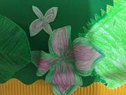 Rainforests Year 2 Assembly (2)